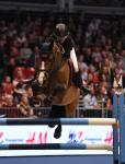 2014 Olympia London Horse Show Day 6 Dec 21st