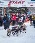 2015 Iditarod Dogsled Race Fairbanks Mar 9th